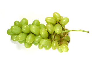green grapes bunch