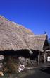 safari guest lodge