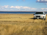 pickup out in the blowing prairie grasses poster