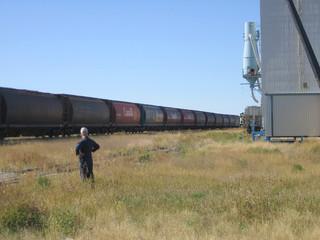 farmers wheat on rail