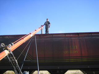 loading wheat into railcar in saskatchewan