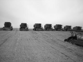 convoy of tractors