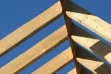 roof frame poster