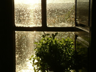 temps de pluie dimanche à la campagne