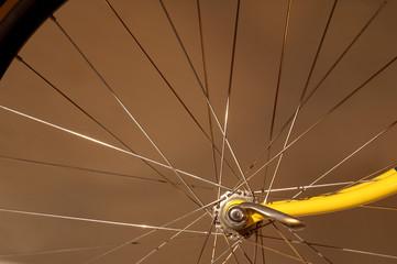 wheel spokes
