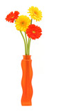 Fototapety gerbera daisies in vase