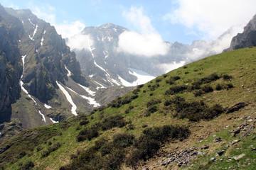 massif de l'arbizon - pn 330x19
