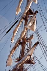 mast.1