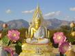 thai desert buddha