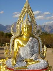 desert buddha