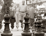 older couple came to play chess poster