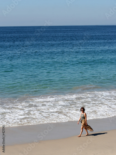 poster of woman walking on the beach