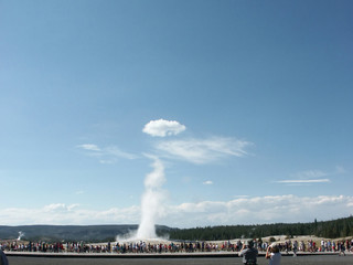old faithful with wings