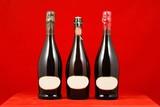 sparkling wine bottles poster