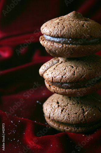 chocolate cookies - text