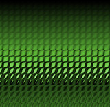 green alligator skin poster