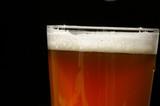 beer head poster
