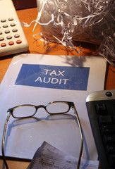 tax audit - white collar crime