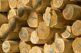lumber stack poster