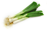 spring onion poster