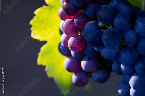 glowing dark wine grapes