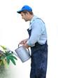 gardener - worker  watering plants