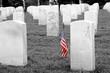 soldiers grave - selective colorization