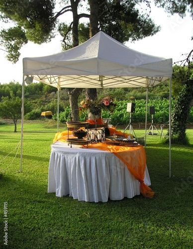 catering buffet - 459115