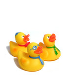 family of toy ducks poster