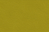 lizard skin abstract poster
