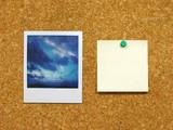 polaroid & post-it on corkboard poster