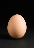 single egg on black poster
