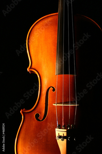 canvas print picture violin