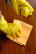 housekeeping: cleaning the furnitures