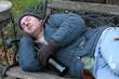 homeless man - on park bench
