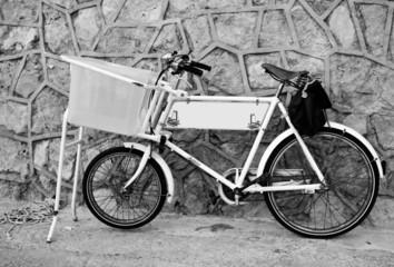 bicicleta b/n ii
