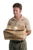 sorry delivery man poster