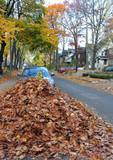 fall street scene, pile of leaves poster
