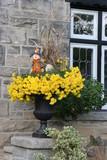 pot of chrysanthemums poster