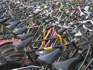 dutch city bikes