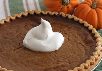 pumpkin pie - closeup