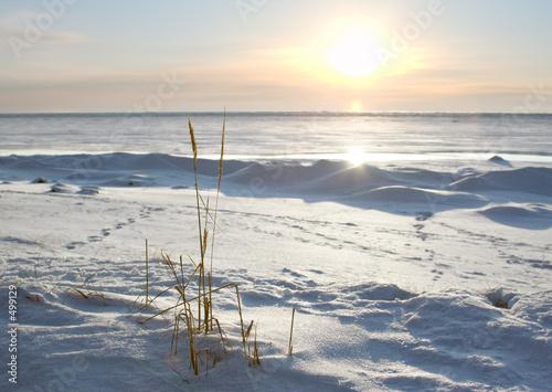 cold sunset - 499129