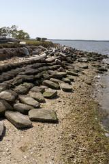 shore defence