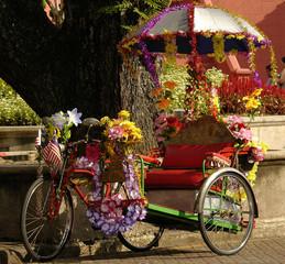 malaysia; malacca: rickshaw