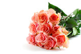pink rose bouquet on white poster