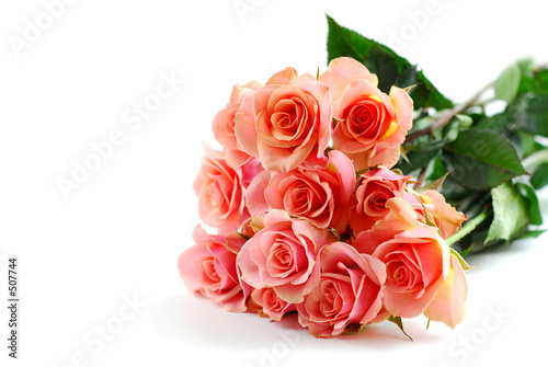 pink rose bouquet on white
