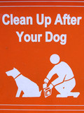 public sign - clean up after your dog poster