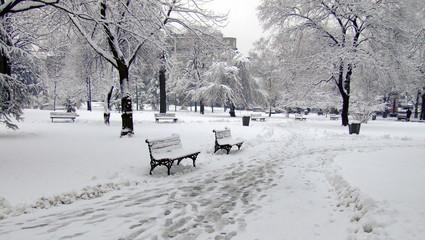 winter park snowed