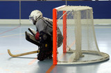 goal rink hockey poster