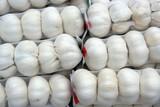 garlic bulbs in mesh bag poster